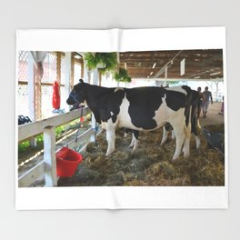 Black and white cow Throw Blanket