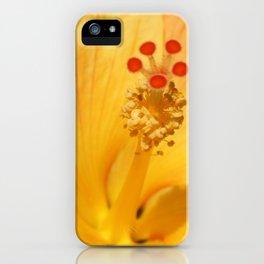 Golden Hibiscus iPhone Case