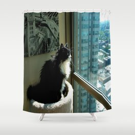 Surveying Her Realm (Gracie Queen of Chicago Collection) Shower Curtain