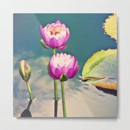 Pink Lotus Flowers (Namaste) Metal Print