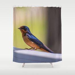Shiny Swallow Shower Curtain