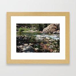 Section of the kern River Framed Art Print