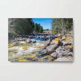 River Calm 3 Metal Print