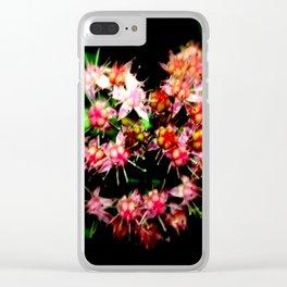 Cacti (Cactaceae) Clear iPhone Case