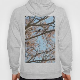 Rowan tree branches with berries and bird Hoody