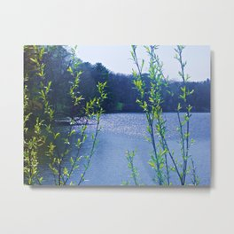 Peaceful Retreat Metal Print