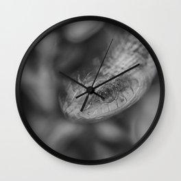 Blurry Boomslang Wall Clock