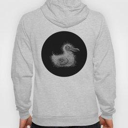 Chick Hoody