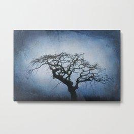Louisbourg Creepy Tree Metal Print