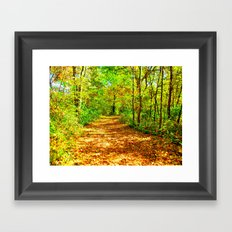 Path to Nowhere Framed Art Print