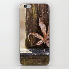 a leaf and bokeh iPhone & iPod Skin