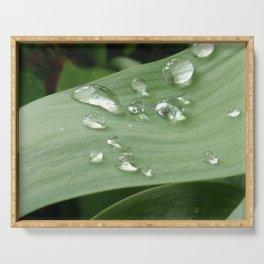 Rain Drops Serving Tray