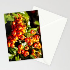 Summer Berries Stationery Cards