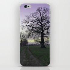 evening light... iPhone & iPod Skin