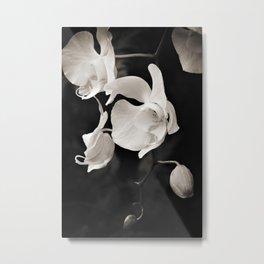 Sepia Orchids Metal Print