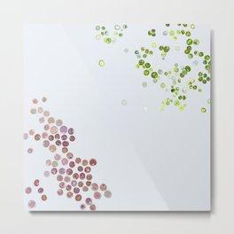 Red & green algae Metal Print