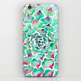 Echeveria Succulent iPhone Skin