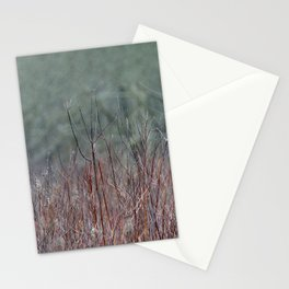 In the Marsh Stationery Cards