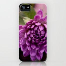 la vie en violet iPhone Case