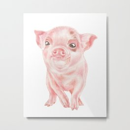 Baby Pig Watercolour | Baby Animal Art | Animals Metal Print