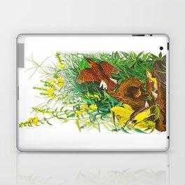Meadow Lark Laptop & iPad Skin