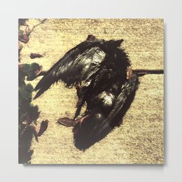 Mutilated bird Metal Print