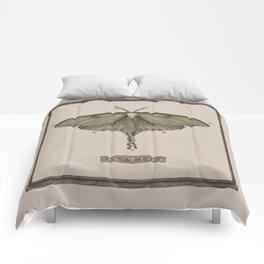Luna Moth Comforters