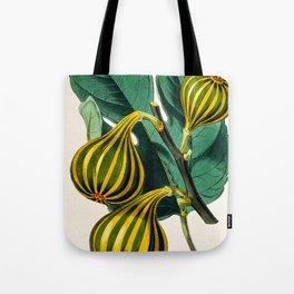 Fig plant, vintage illustration Tote Bag