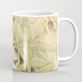 Epidendrum profusum 140 8551 Coffee Mug