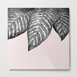 Leaves and pink Metal Print
