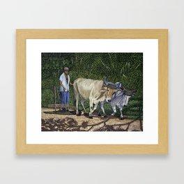 Cuban Countryman Oil Painting Framed Art Print