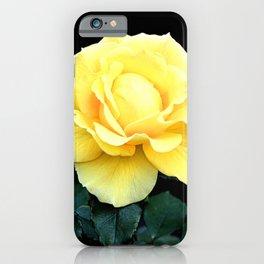 Beautiful Bunny Rose iPhone Case