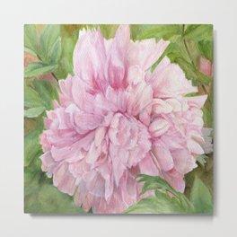 Pink Peony Floral Watercolor Original Painting Botanical Garden Flower Detailed Realism Metal Print