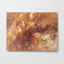 Martian soil Metal Print