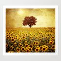 lone tree & sunflowers field by vivianagonzlez