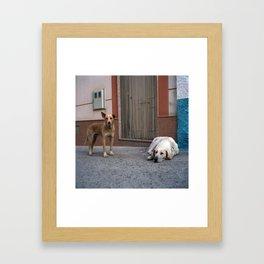 Abrucena, 2011 Framed Art Print