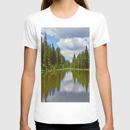 Lake Irene 2018 Study 1 T-shirt