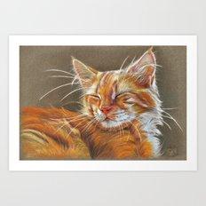Sleeping Ginger Kitten CC12-005 Art Print