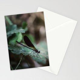 Slider control Stationery Cards