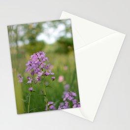 hidden grove Stationery Cards