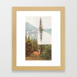 The Why and the What For Framed Art Print