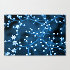 Flower Constellation  Canvas Print