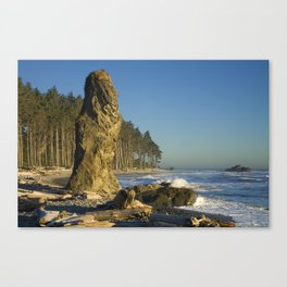 Sea Stack on Ruby Beach in Washington State Canvas Print