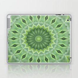 Green Beauty Laptop & iPad Skin