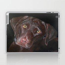 Inquisitive Chocolate Labrador Laptop & iPad Skin