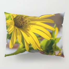 Yellow Flower in NYC Pillow Sham