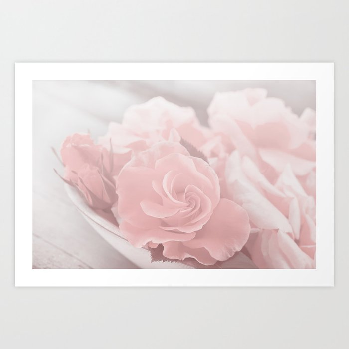Lovely Rose in soft pink pastel tone Art Print
