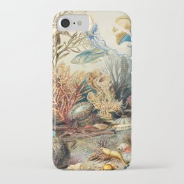 Ocean Life by James M. Sommerville 1859 iPhone Case