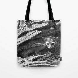 Ringtail #2 Tote Bag