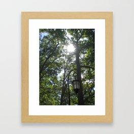 Lamppost, Wellesley College Framed Art Print